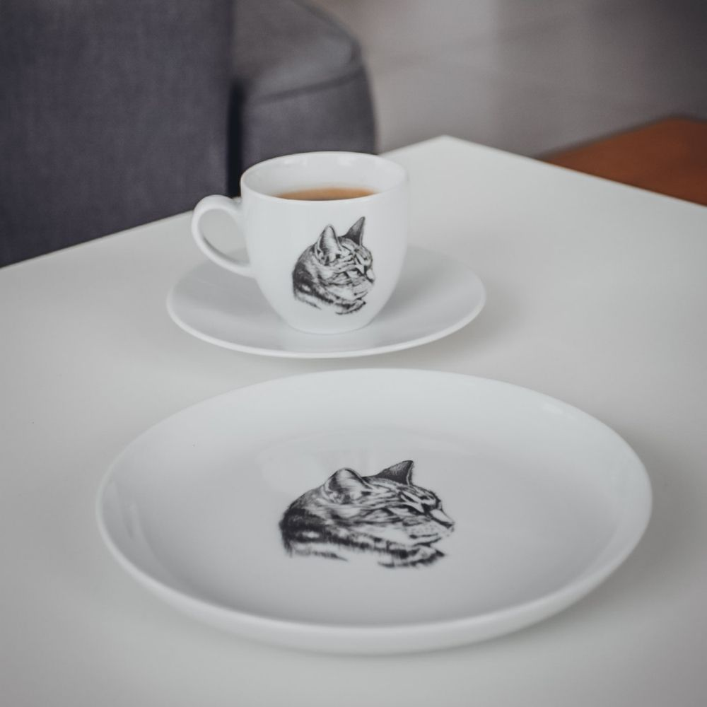 talerz z kotem