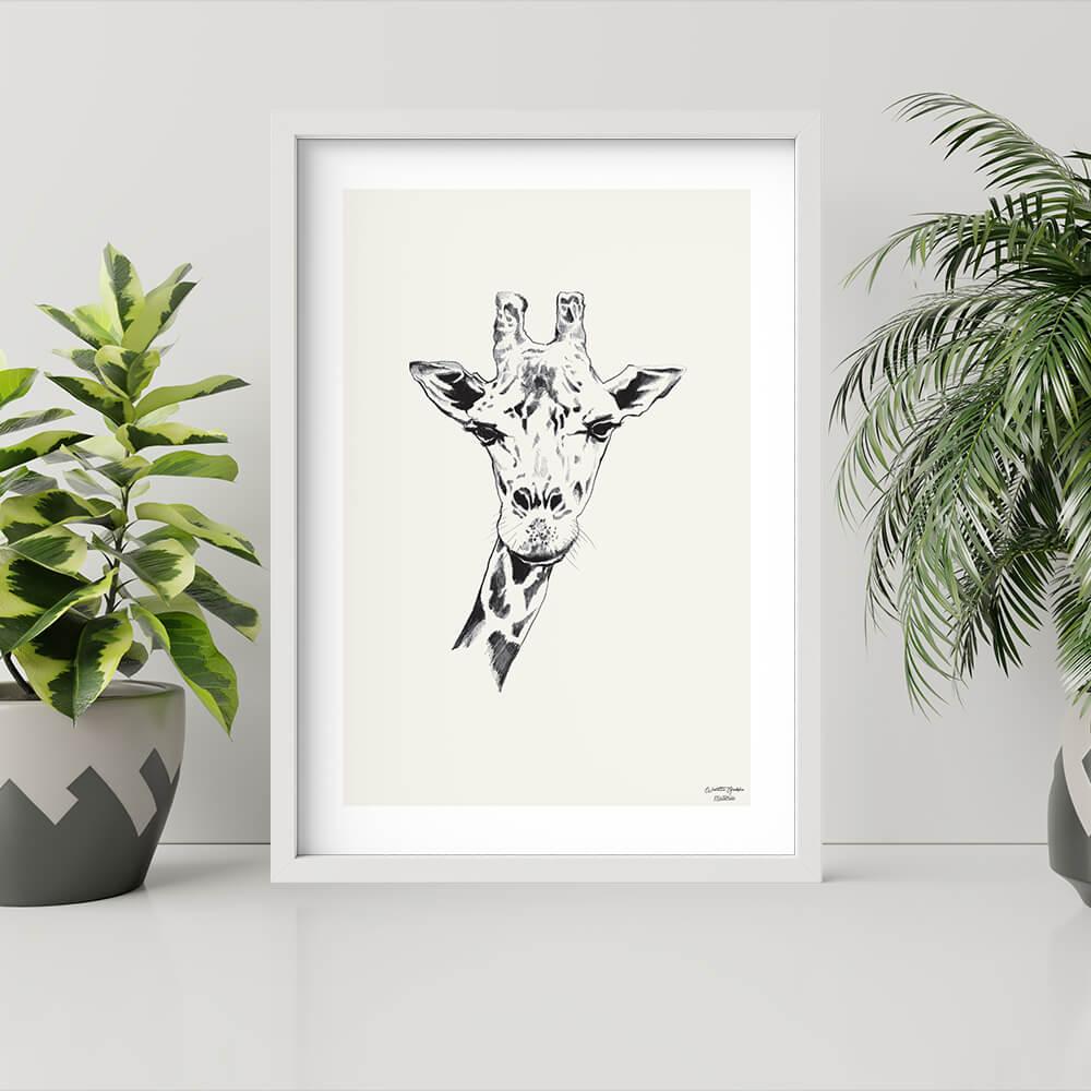 plakat ze zwierzętami